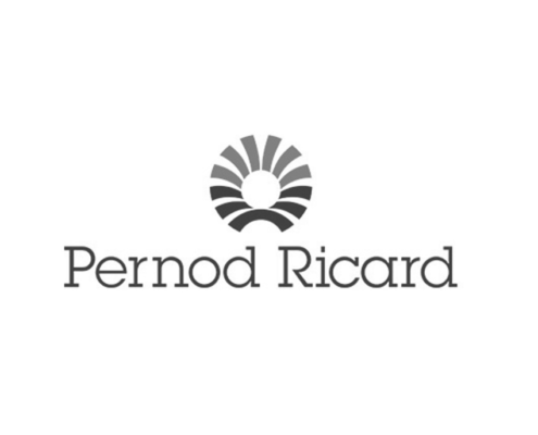 pernod richard progetto crm